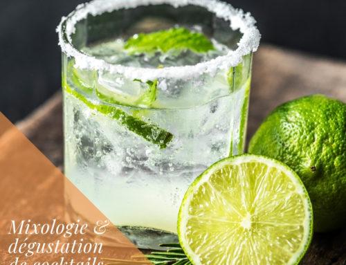 Mixologie & dégustation de cocktails